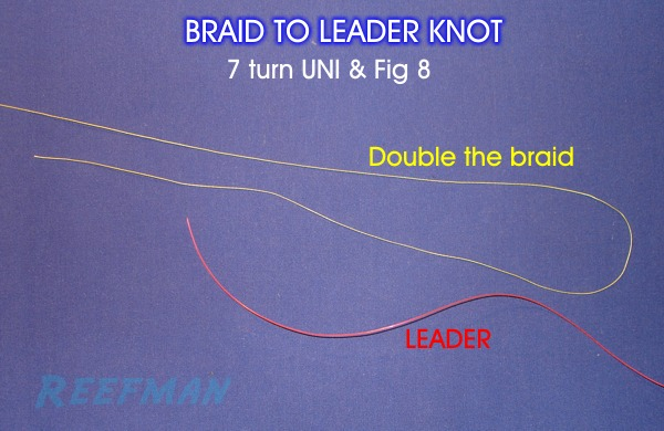 BRAID TO LEADER KNOT - 7 turn UNI with Fig 8 - ULTIMATE