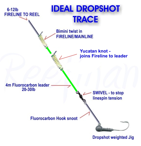 Pin drop shot technique on pinterest for Drop shot fishing