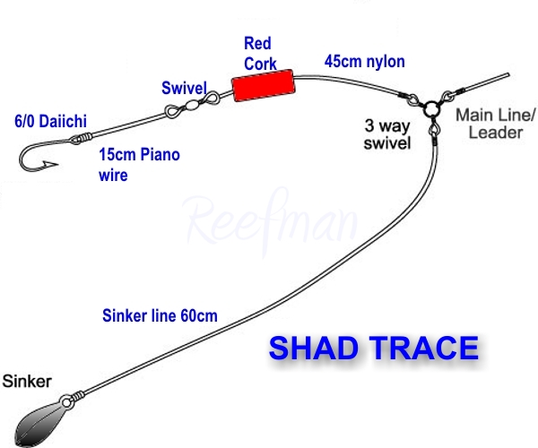 Normal shad trace ultimate angling the ultimate sa for Shad fishing rigs