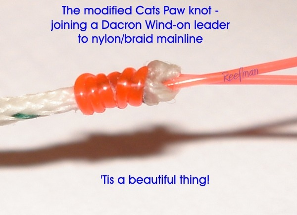 Modified cats paw knot joining a wind on twisted leader for How to make fishing leaders